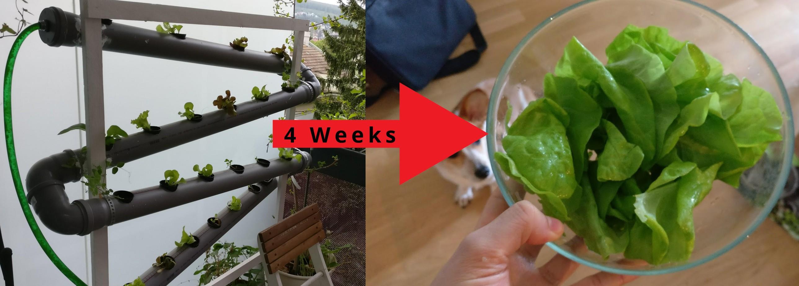 DIY vertical hydroponic system